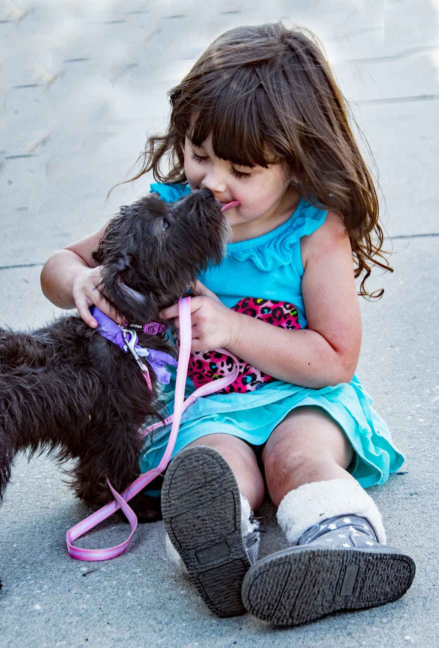 black dog beside little girl